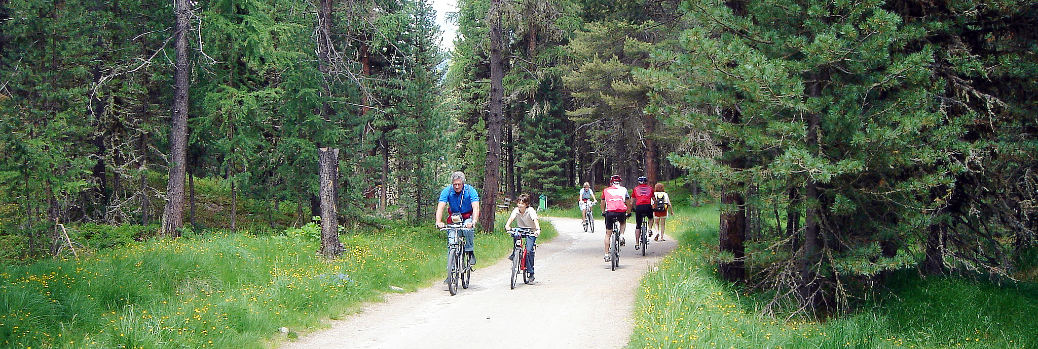 Landscapes For Health And Recreation Wsl