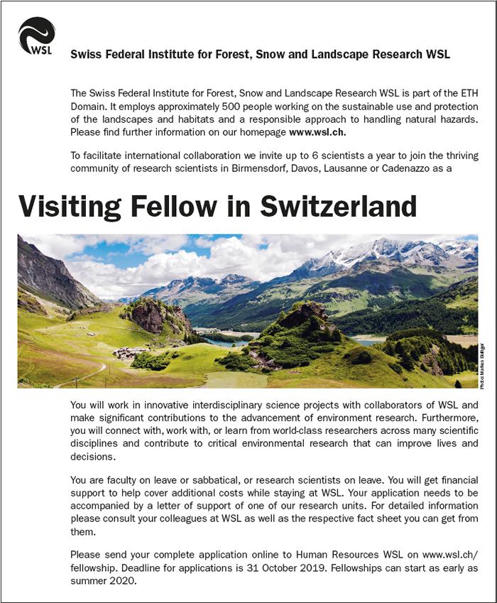 Fellowship - WSL